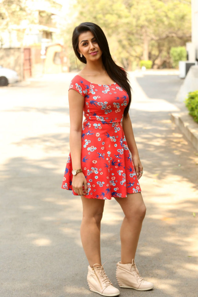 Actress Nikki Galrani
