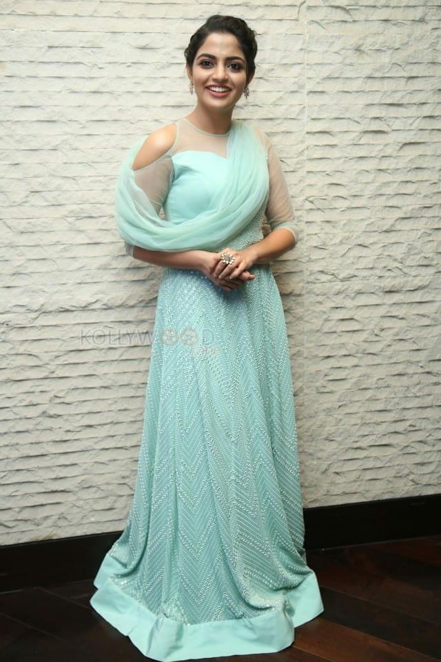 Actress Nikhila Vimal At Donga Movie Pre Release Event Photos