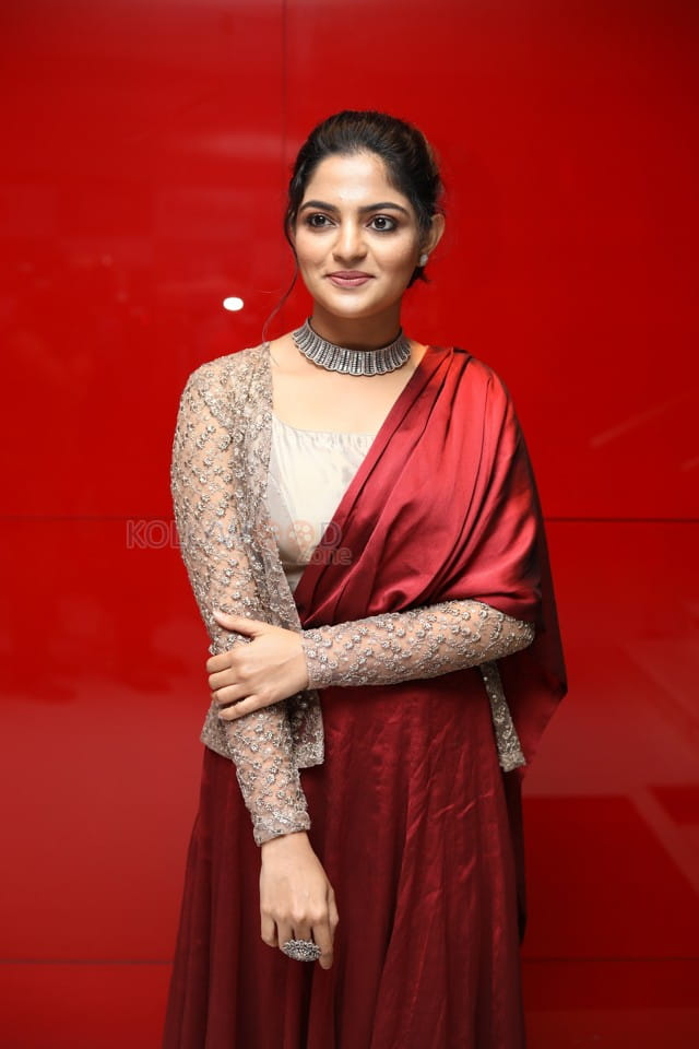 Actress Nikhila Vimal At Thambi Movie Audio Launch Stills